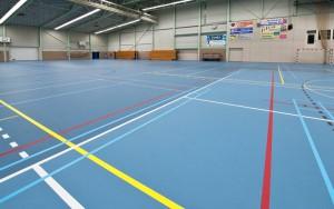 Спортивные покрытия для зала Pulastic Bronze Line Descol